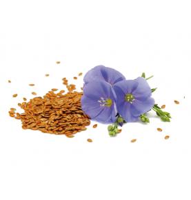 Aceite de lino Bio, El Granero (500ml)  de El Granero Integral