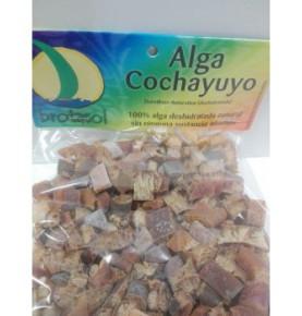 Alga Cochayuyo, Brotasol (80g)  de